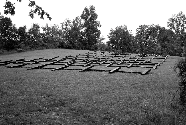 Fotografia di Richard Nonas (particolare), installazione Northern New York, 2009