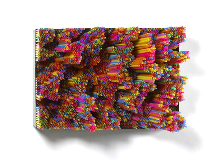 STRAWS, 2011, cm 40x60 - FP110126