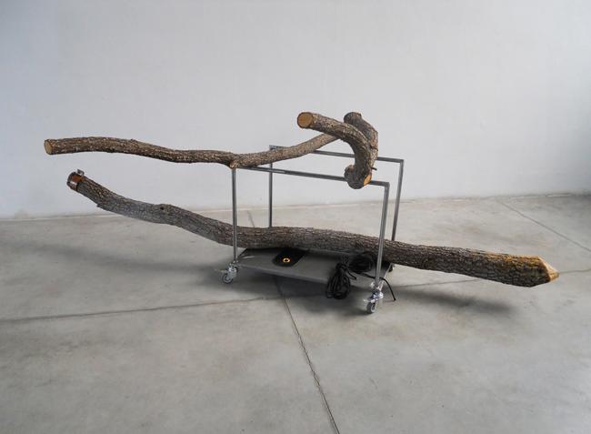 """Davide Savorani, """"Green Room"""", veduta dell'installazione"""