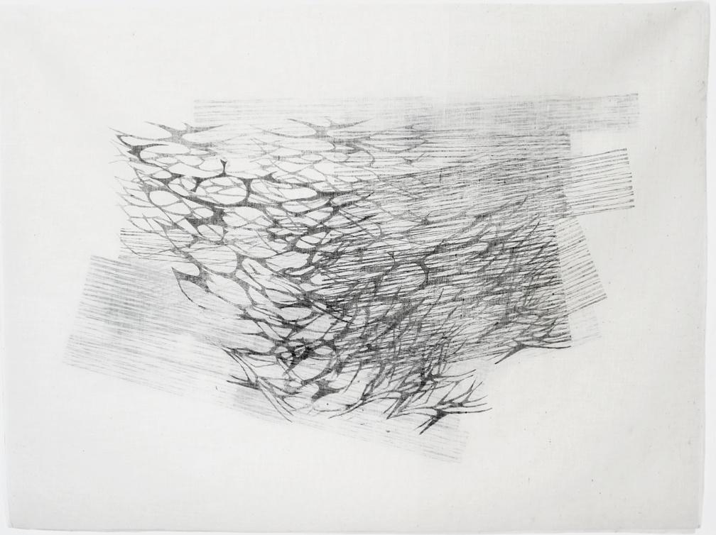 Asako Hishiki, Intreccio no.3, 2012, xilografia su tessuto, 63x85cm