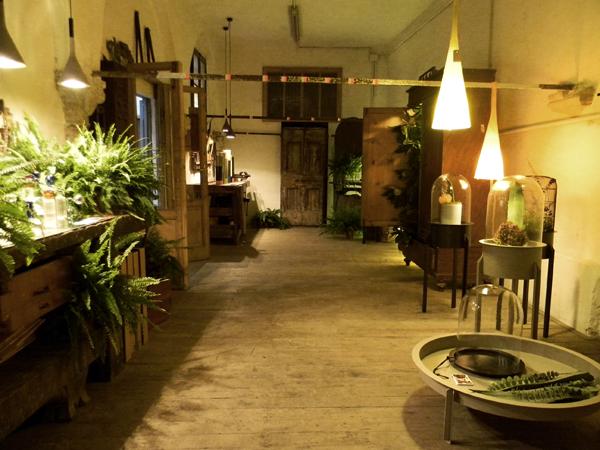 Rua Confettora 17, Una veduta della mostra Giardino d'Inverno di Cristina Celestino
