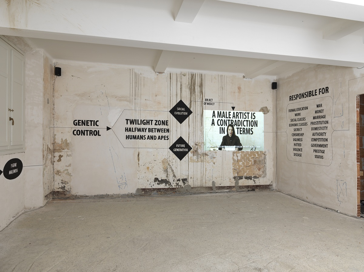 """veduta della mostra """"Chiara Fumai legge Valerie Solanas"""", video performance con installazione, 2013"""