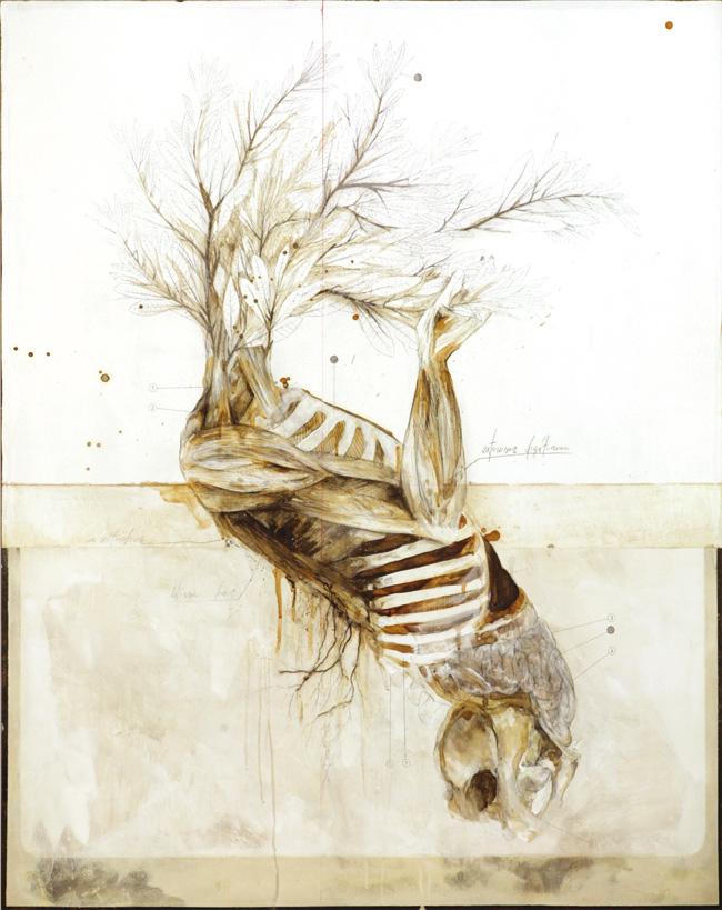 Nunzio Paci, De signatura rerum naturalium, 2012, cm 100x80, matita, olio, resine, bitume, radici su tela