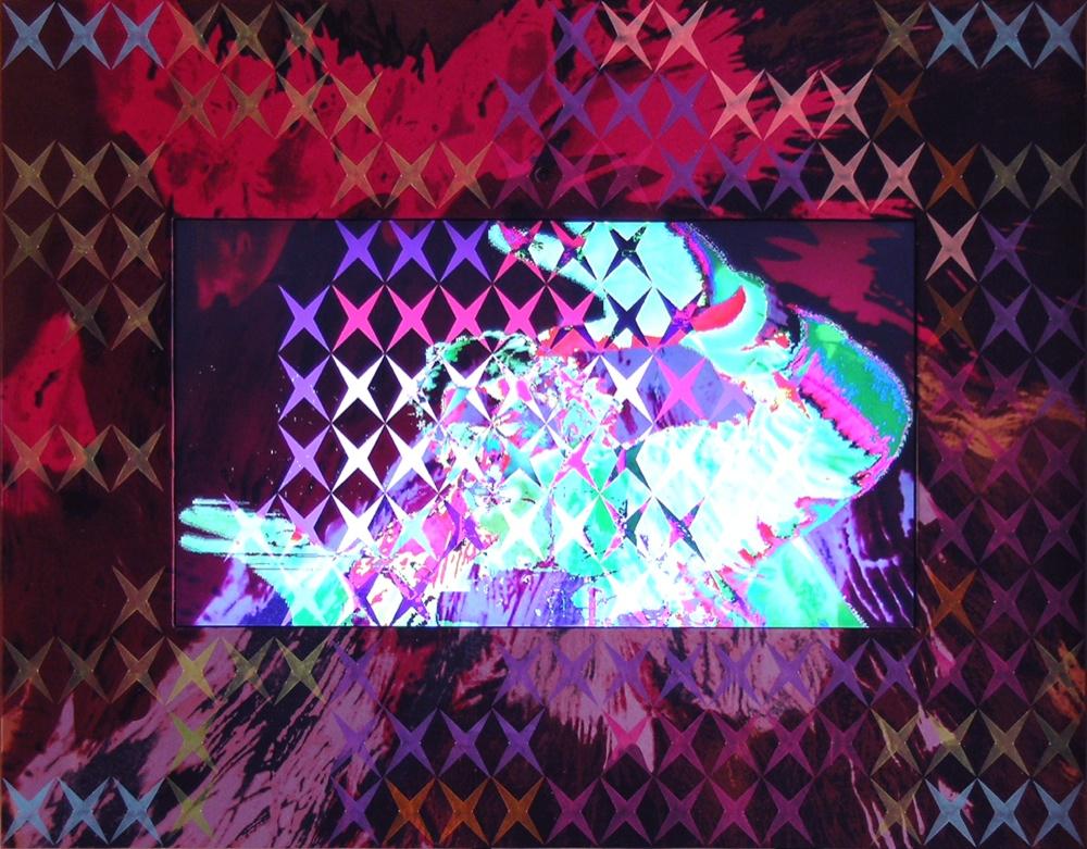 Vincenzo Marsiglia, Hirst Star Interactive, 2011, cm 48x60, acrilico su seta, webcam, software e monitor LCD, Collezione privata Foto Rodolfo Hernandez