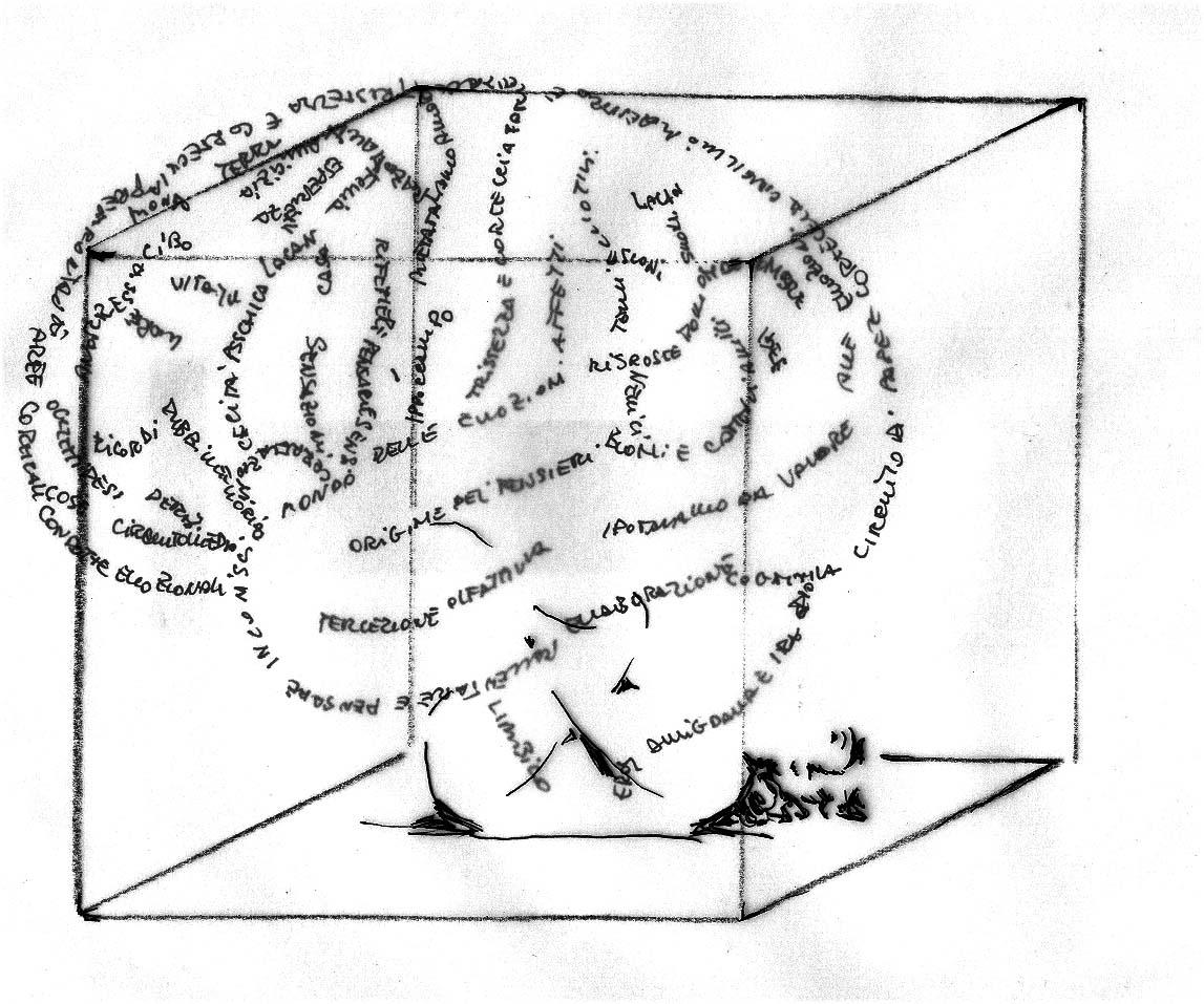 Elena Arzuffi, Il linguaggio segreto del corpo, 2012, disegno due fogli sovrapposti, cm 21x29.7, 1/1. Courtesy Rossana Ciocca