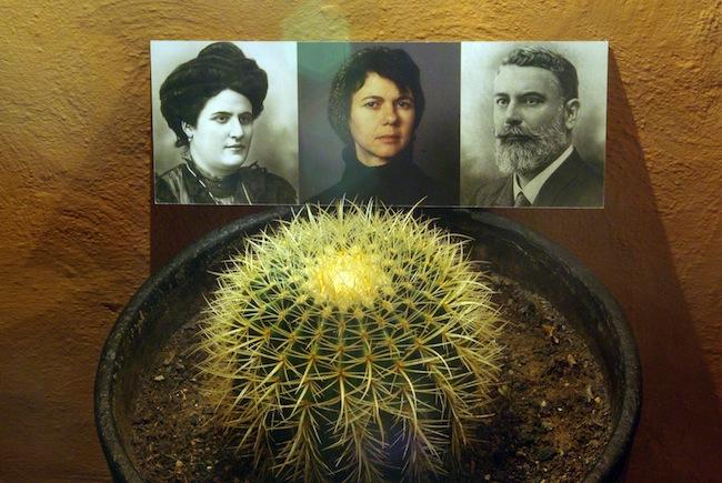 Cristina Nuñez. BUT BEAUTIFUL, veduta dela mostra da Sponge Living Space. Foto: Stefano Baraghini