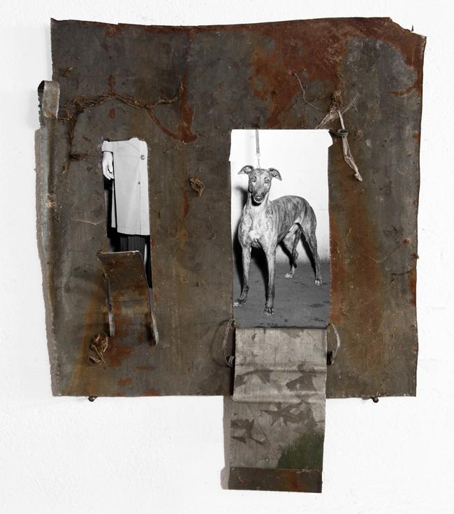 Christian Fogarolli, mynameis Ernest, metallo, foto, 51x41 cm - Courtesy: Galleria Boccanera, Trento