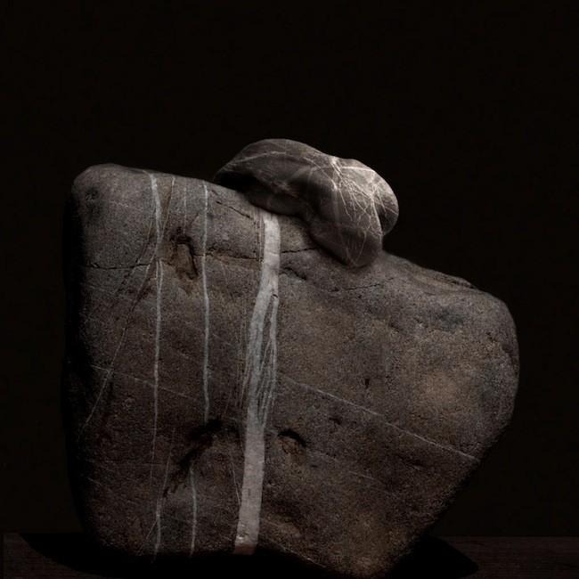 Innesto, 2010, Serie Segni di pietra