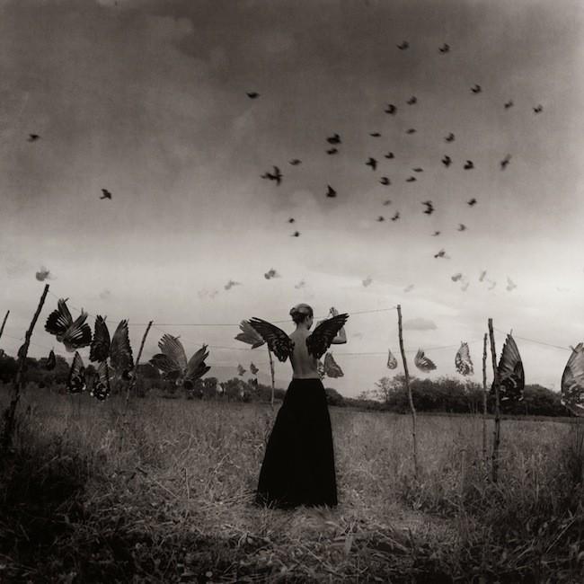 Le ali dei sogni, 2004, serie Anakronos