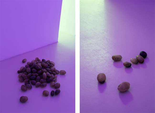 Luca Francesconi, Campo di patate, 2014, 100 potatoes of resin, pigment, variable dimensions