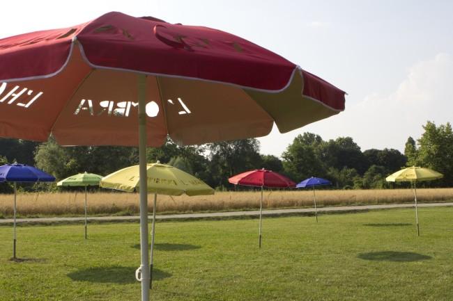Ecoismi 2014: Noy Jessica Laufer, L'ombra l'hanno inventata gli alberi, 2014