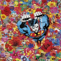 Felipe Cardeña Super Power Flower collage su tela 110x80 2014low
