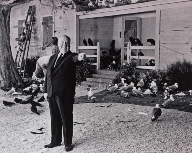 """Alfred Hitchcock sul set de """"Gli Uccelli"""" (1963) © 2014 Universal Studios. Tutti i diritti riservati MONDADORI PORTFOLIO/ALBUM"""