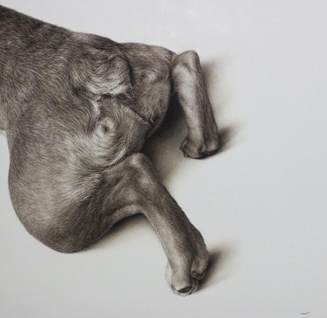Amber Sena, Stinger, 2014, carboncino, pastello su carta su legno, 91x91cm