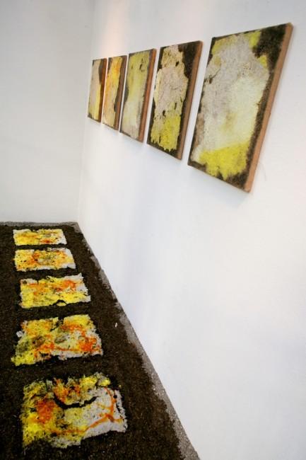 Michele Bruna, Ortus – Obitus Foto di Marco Sasia