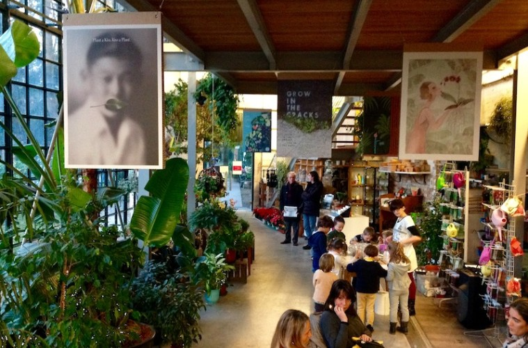 Natural Recall. Le affinità elettive con la natura, veduta degli allestimenti, Serra dei Giardini, Venezia