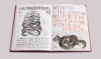 Sissi Anatomia Parallela, 2014 libro d'artista, 33 x 23 cm tecnica mista, disegni, collage, testi