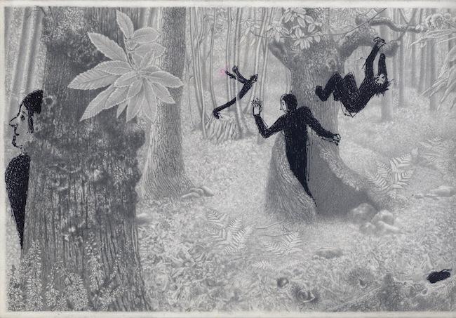 Giuliano Guatta e Daniela Perani, Quattro passi nei boschi, 2014, grafite su carta, inchiostro su acetato.