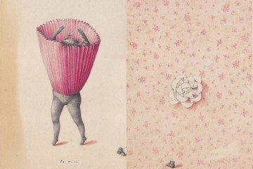 Joanna Concejo, Le rose