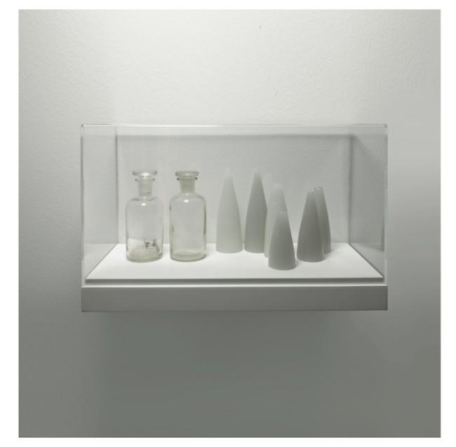 Elena Modorati, Mémoire II, 2015, cera, vetro in teca, 34x40x20 cm Courtesy Progettoarte elm Foto Bruno Bani, Milano