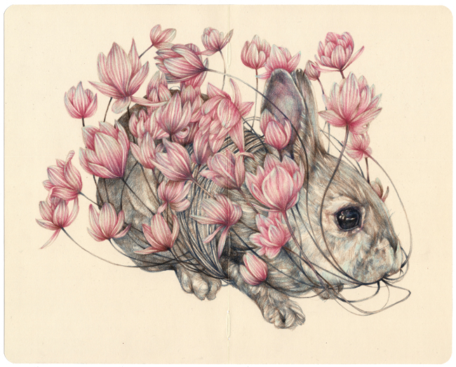 Marco Mazzoni, The Gardener, 2015, matite colorate su Moleskine, cm 21x26