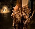Mattia Bosco. Fiori violenti: fototropismo verso la forma, Atipografia Associazione Culturale, Arzignano (VI) Foto Luca Peruzzi (veduta dell'allestimento)