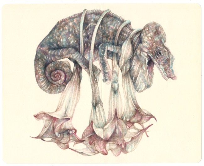 Marco Mazzoni, THE PUSHER, 2015, matite su moleskine, 21x26 cm