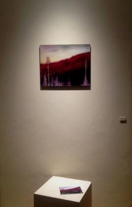 vibra, veduta della mostra Visioni del Settimo Giorno di Giulia Dall'Olio