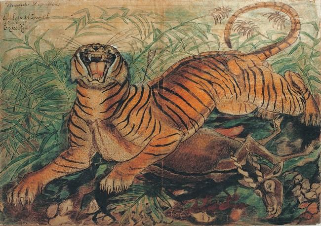 Antonio Ligabue, Tigre reale, 1941, china e pastelli a cera su carta intestata dell'Ospedale Psichiatrico San Lazzaro di Reggio Emilia, 36x50 cm