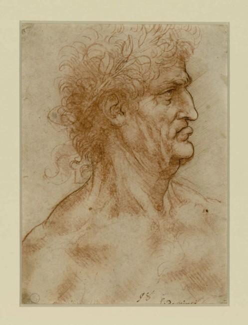 Leonardo da Vinci, Testa maschile di profilo verso destra coronata di alloro, 1506-08 circa, matita rossa ripassata a penna e inchiostro su carta bianca, 22.2x17.5 cm, Biblioteca Reale, Torino