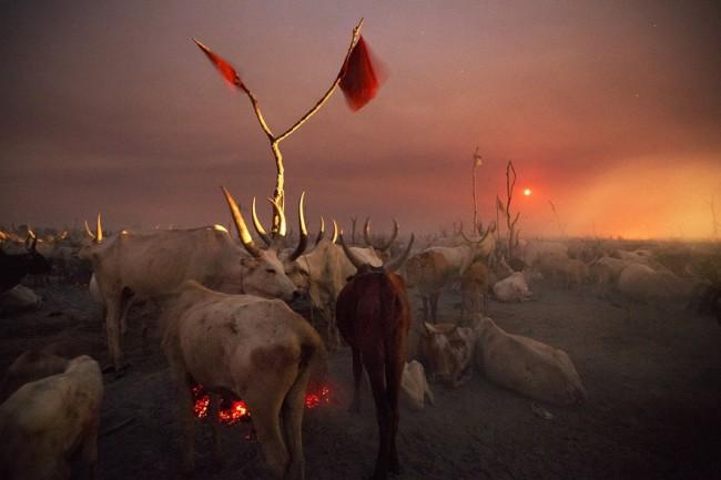 Kazuyoshi Nomachi, Un accampamento di allevatori nella notte mentre sorge la luna piena Jonglei, Sudan del Sud, 2012 © Kazuyoshi Nomachi