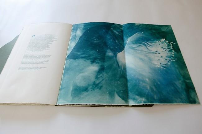 Alessandra Angelini, Il Giardino è aperto, libro d'artista, 2015 © Andrea Artoni