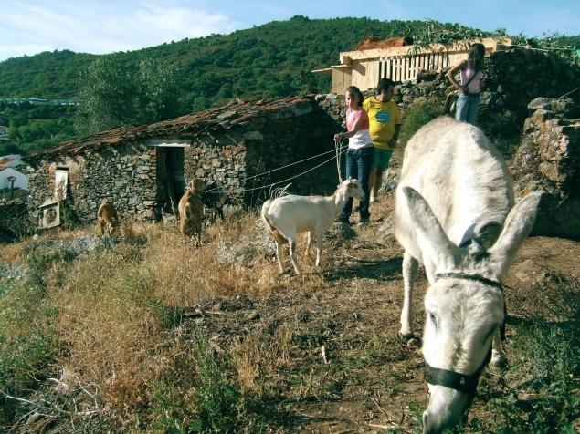 Fernando Garcia-Dory, Inland - Campo Adentro Courtesy of Fernando Garcia-Dory