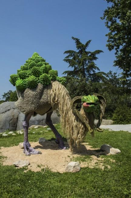 Nicolò Borgese, Thorax Brassica, 2014