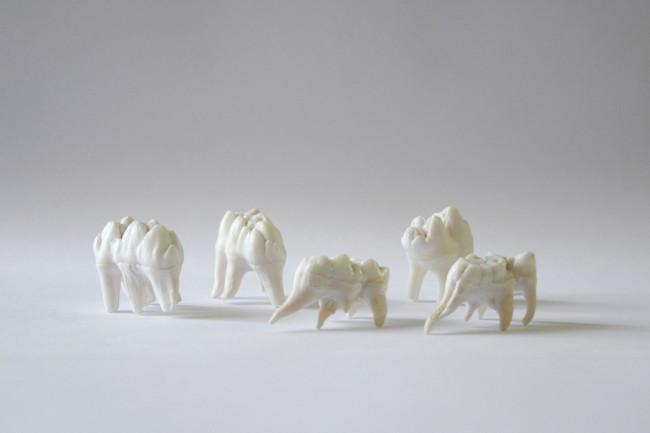 Chiara Lecca, Elefanten, 2015, denti di bovino, dimensioni reali Courtesy dell'artista