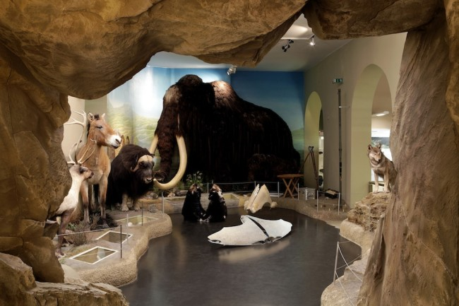 Chiara Lecca. Quod Paret, veduta della mostra, Naturkundemuseum im Ottoneum, Kassel Foto Werner Maschmann (Fenders #2, #4, #5, 2013, parafanghi d'auto, pelli, 38x178x85 cm Courtesy Galleria Fumagalli, Milano)