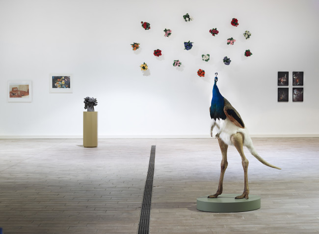 Still-Life remix. 26 artisti contemporanei reinterpretano la Natura Morta, veduta installazione mostra Antinori nel Chianti Classico