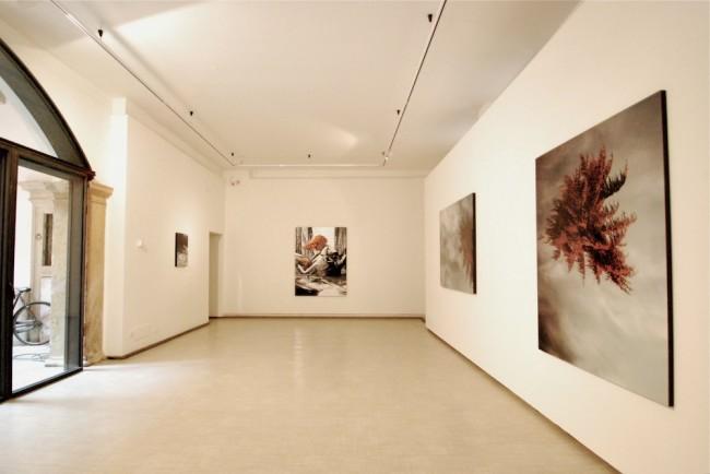 Luisa Raffaelli, Strange Days, 2012, Galleria La Giarina, Verona Courtesy La Giarina, Verona