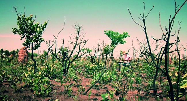 Margherita Leoni, Parque Nacional das Emas, fotogramma estratto da video