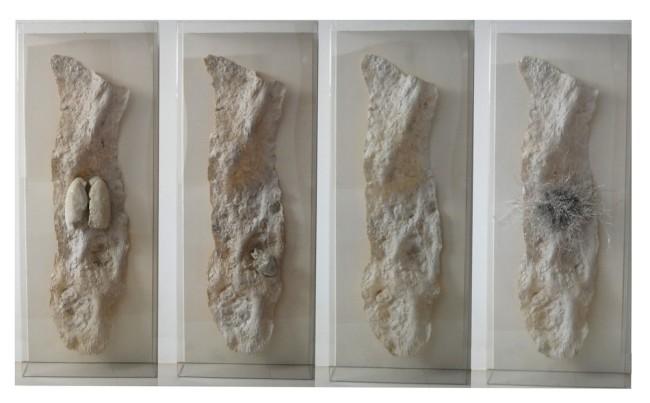 Giacomo Rizzo, Passaggi, 2015, resina, cera, legno, plex, gesso, 160x80 cm