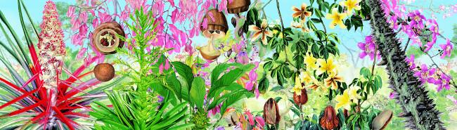 Margherita Leoni, Paradiso terrestre (dettaglio), 2011, stampa digitale su tela, cm 300x2500