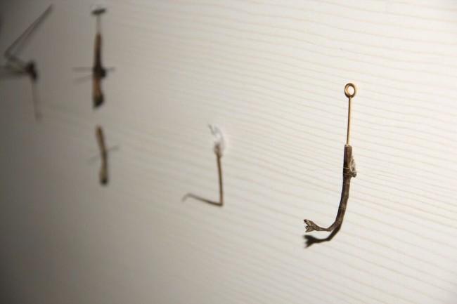 Christian Fogarolli, Instead of God, 2015, legno, insetti, metallo, 60x80x8 cm (dettaglio)