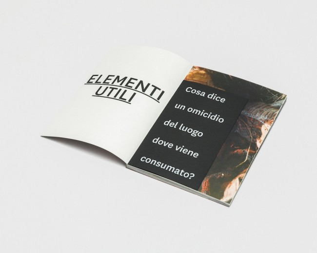 Collettivo Fernweh, Elementi Utili, 2015, libro, 13 fotografie, 7 poster, 3 video, traccia audio, 6 bossoli di pistola, 300x200x150 cm