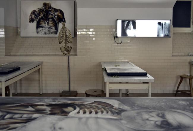 Nunzio Paci, Succurrere Vitae, Museo delle Cere Anatomiche, Bologna