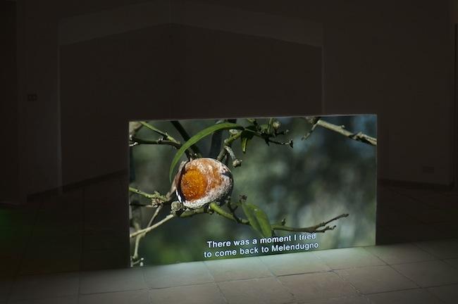 Sandro Mele, Ti avevo avvertito, 2014, Video installazione, 10' 57'' Proiezione su muro, cm. 100x180x10