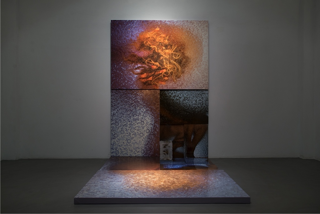 Körperland, Galleria Passaggi, Pisa, febbraio 2016 Veduta della mostra Courtesy dell'artista e Galleria Passaggi, Pisa Foto: Dania Gennai