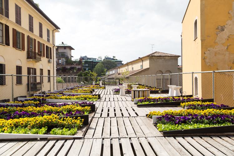 Dalani al Fuorisalone, Orto Cinetico, Milano