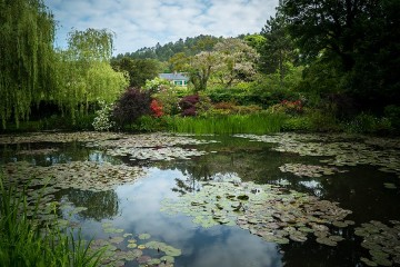 Painting the Modern Garden. Monet's Garden, Giverny. © Seventh Art Productions, David Bickerstaff - preview