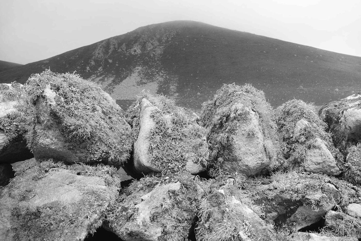 02_©Claudia-Losi_St.-Kilda-Untitled_2012-16Courtesy-Collezione-Maramotti