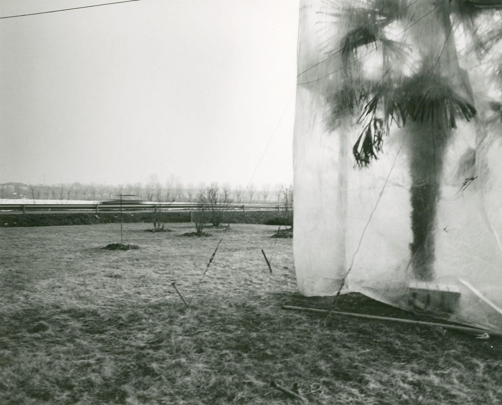 Mimmo Jodice, Via Emilia verso Reggio, 1985 © Mimmo Jodice Courtesy Biblioteca Panizzi